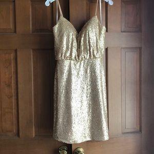 Bari Jay Sequin Dress